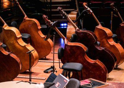 Festival-Toulouse-les-Orgues-2019-Orchestre-Capitole-c-Alexandre-Ollier
